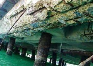 Bétons en environnement marin