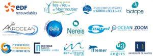 Interactions des EMR avec l'environnement marin