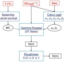 Flowchart of biofouling calculation using environmental data-BIOCALMAR