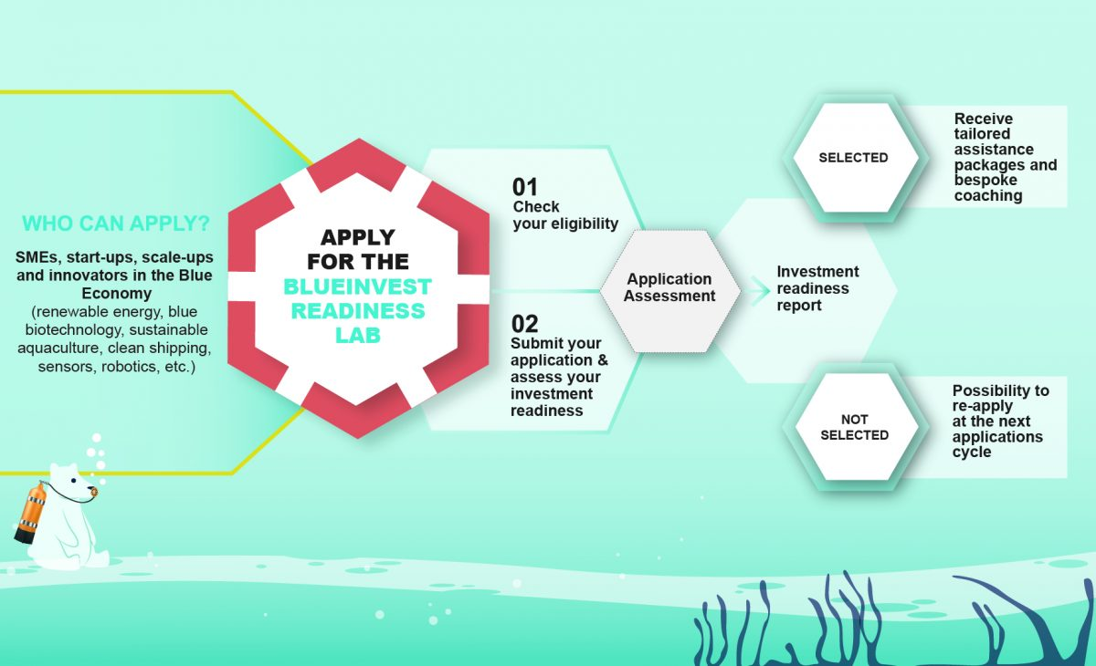 BlueInvest_Readiness_lab_infograpohic_for_companies