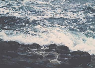 Module Environnement marin - Interactions des EMR avec l'environnement marin