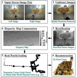 formes 3D sous-marines-Stereo imaging pipeline demonstrated on artificial barnacles