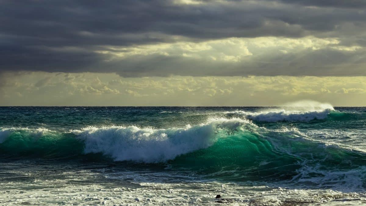 Conseil en océanographie