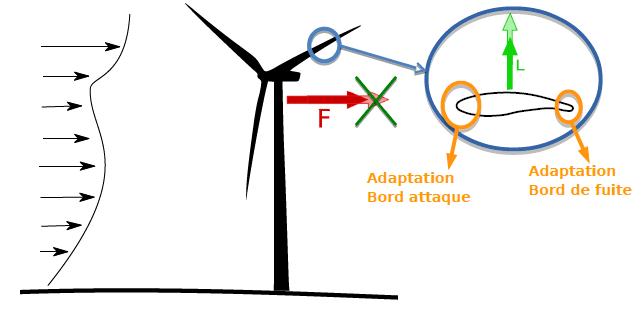 Image Rotor Optim