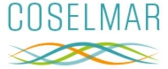 coselmar logo