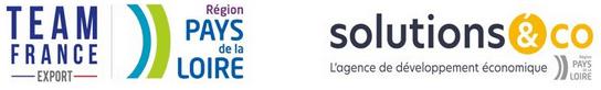 Logo team france solutions&co